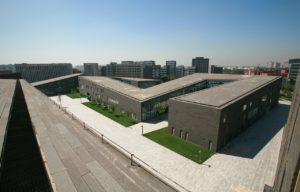 Mody dach 2020