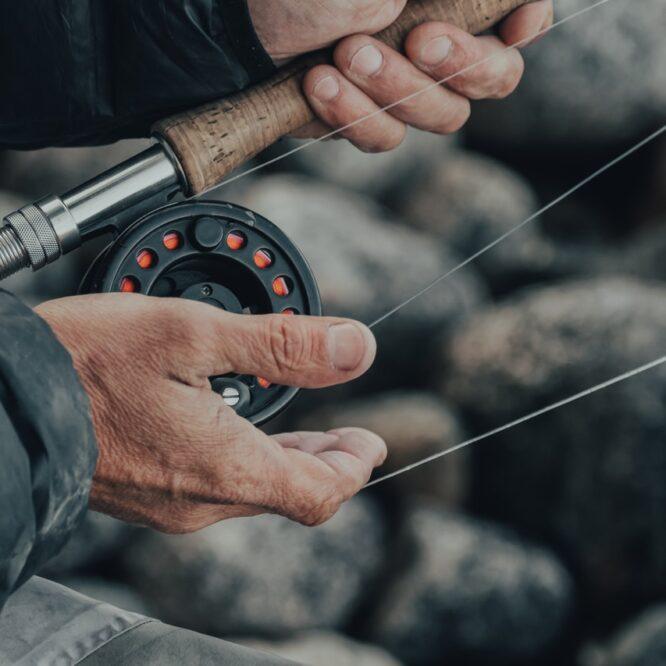 lowienie ryb